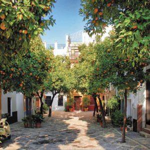 Tour-Sevilla-Free